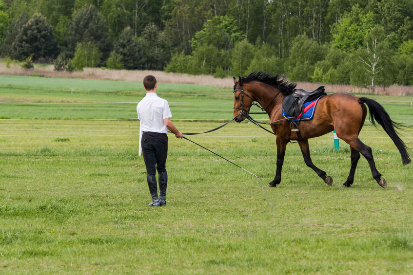Jockey training a race horse outdoors